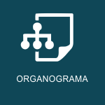 organograma-camaras